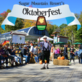 Oktoberfest Vendor/Artist Registration
