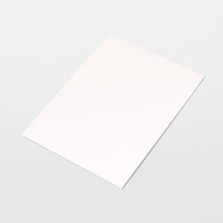 "Texwipe TX5832 TexWrite Heavy-Weight 8.5"" x 11"" White Cleanroom Paper"