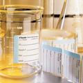 "TX522A Pre-Printed Sterilization Indicator Labels 2.0"" x 2.0"" Autoclave"