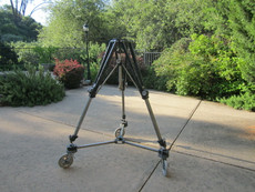 Studio Cinema Tripod + Spreader for 35mm Movie Camera (Worral, Arriflex, Arri Tripod Head)