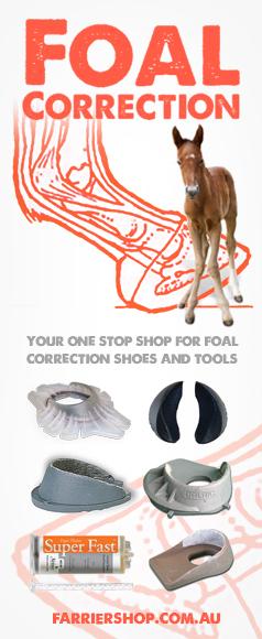 Foal Correction