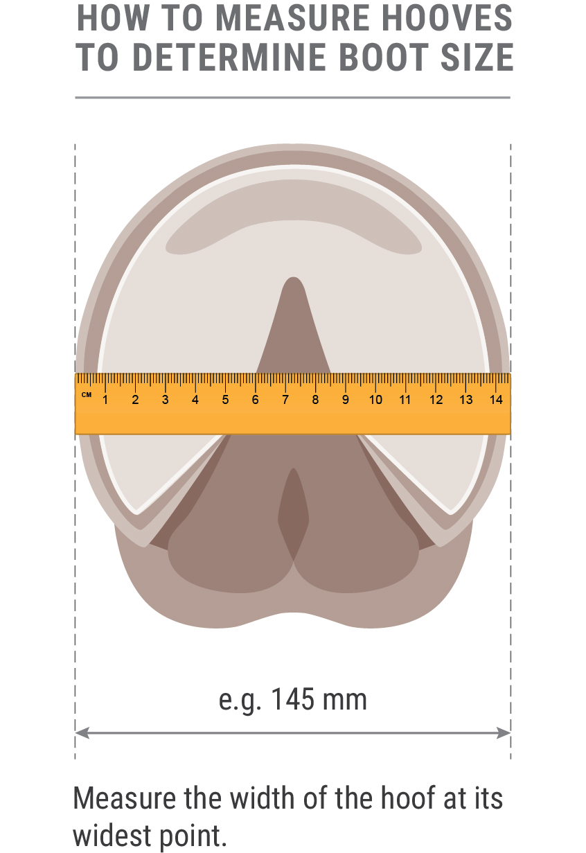 measuring-hoof-diagram-for-boots-for-no-table-2-01.jpg