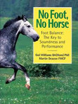 No Foot No Horse by Martin Deacon