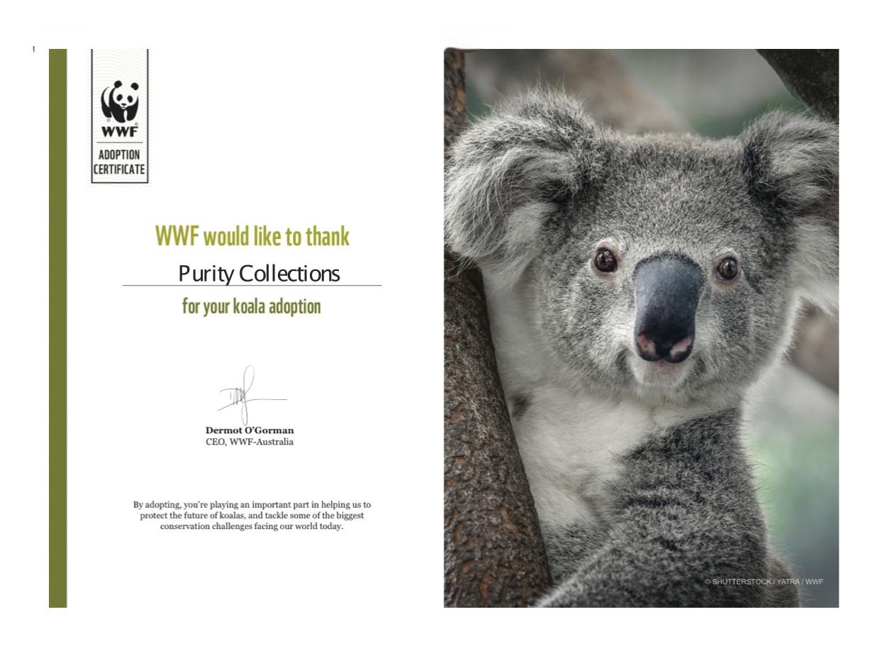 koala-adoption-wwf-australia.jpg