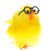 6 XLarge Nerdy Yellow Fuzzy Chenille Chicks w/Glasses