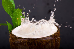 Coconut Hangsen e-Liquid