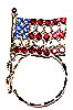 SPEC pin Crystal American Flag Pin
