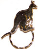 SPEC pin Kangaroo