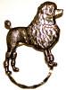 SPEC pin fancy Poodle
