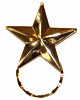 SPEC pin Star