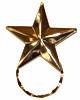 SPEC pin Star