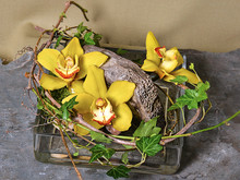 Elegant yellow orchid blossoms tucked into a low container with rocks and vines.