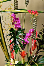 Unusual arrangement of tropical flowers and dramatic accents will make you think of the exotic jungle. Escape the ordinary!