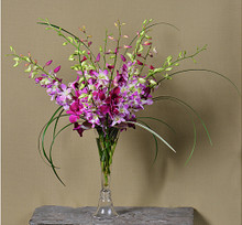 Stunning orchids arranged in a glass vase