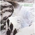 Echo & the Bunnymen - Porcupine  - LP
