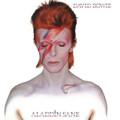 David Bowie - Aladdin Sane - 180g LP