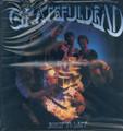 Grateful Dead - Built To Last - LP - 180g