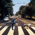 Paul McCartney - Paul is Live - Limited Peach/Blue 180g Vinyl 2xLP