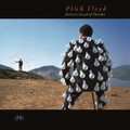 Pink Floyd - Delicate Sound of Thunder - 180g 2xLP