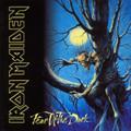 Iron Maiden - Fear Of The Dark (High Res Audio Remaster) - 180g 2xLP