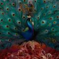 Opeth - Sorceress - 2x 180g LP
