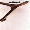 Wishbone Ash - S/T - Opaque Brown Vinyl - LP