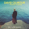 "David Gilmour -Yes I Have Ghosts - 7"" Vinyl"