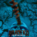Pantera - Far Beyond Driven - Indie Exclusive Limited Edition Marbled Blue Vinyl - LP