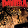 Pantera - The Great Southern Trendkill - Orange Vinyl - LP
