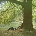John Lennon - Plastic Ono Band (Ultimate Mixes)