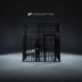 NF - Perception - 2xLP