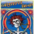Grateful Dead, The - Grateful Dead (Skull & Roses) (Live) - 2xLP