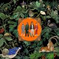 Don Broco - Amazing Things - Indie Exclusive Green Vinyl - LP