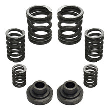 4k GSK / Valve Spring Bundle