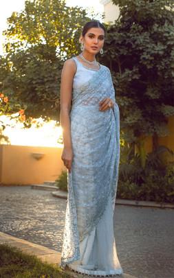 Designer Saris Collection Washington