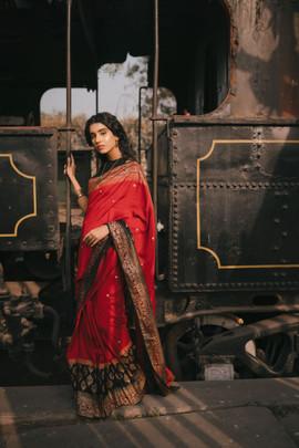 Designer Saris Collection Vegas