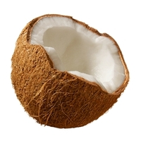 Coconut TFA ***OUT OF STOCK***