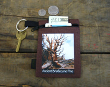 Ancient Bristlecone Pine #800 Hemp Key Coin Purse