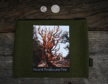 Ancient Bristlecone Pine #818 Medium & Large Hemp Coin Purse