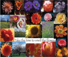 Take the time to smell the flowers greeting card