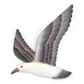 WALL ART - FLYING SEAGULL WALL SCULPTURE - COASTAL & NAUTICAL WALL DECOR
