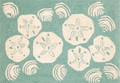 """COASTAL TREASURES"" INDOOR OUTDOOR RUG - AQUA - 24"" X 36"" - SEASHELLS AND SAND DOLLARS RUG"