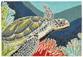 """TURTLE CREEK"" INDOOR OUTDOOR RUG - 24"" x 36"" - SEA TURTLE RUG"