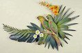 AMAZON PARROTS & TROPICAL ORCHIDS WALL SCULPTURE - TROPICAL DECOR