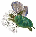SEA TURTLE WITH CORAL METAL WALL SCULPTURE - NAUTICAL WALL ART