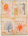 """SEA LIFE"" THROW BLANKET - 50"" X 60"" - JELLYFISH - SEAHORSE - OCTOPUS"