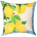 """LEMON GROVE"" INDOOR OUTDOOR PILLOW - 18"" SQUARE"