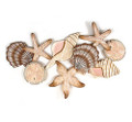 WALL SCULPTURES - SEASHELL COLLECTION WOODEN WALL SCULPTURE - NAUTICAL DECOR
