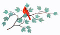 CARDINAL ON MAPLE LEAF BRANCH METAL WALL SCULPTURE - FREE SHIPPING*