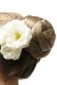 Cherish Formal Affair Hairpiece by easiHair